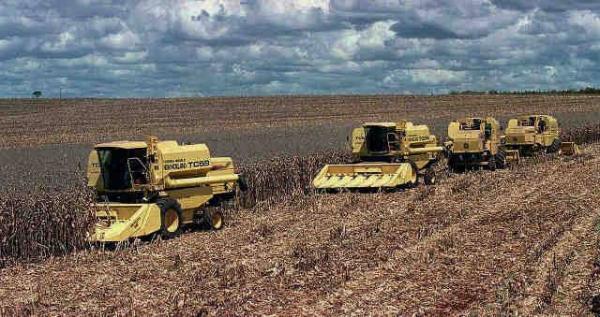 Futuro governo não permitirá venda de terras agricultáveis à China
